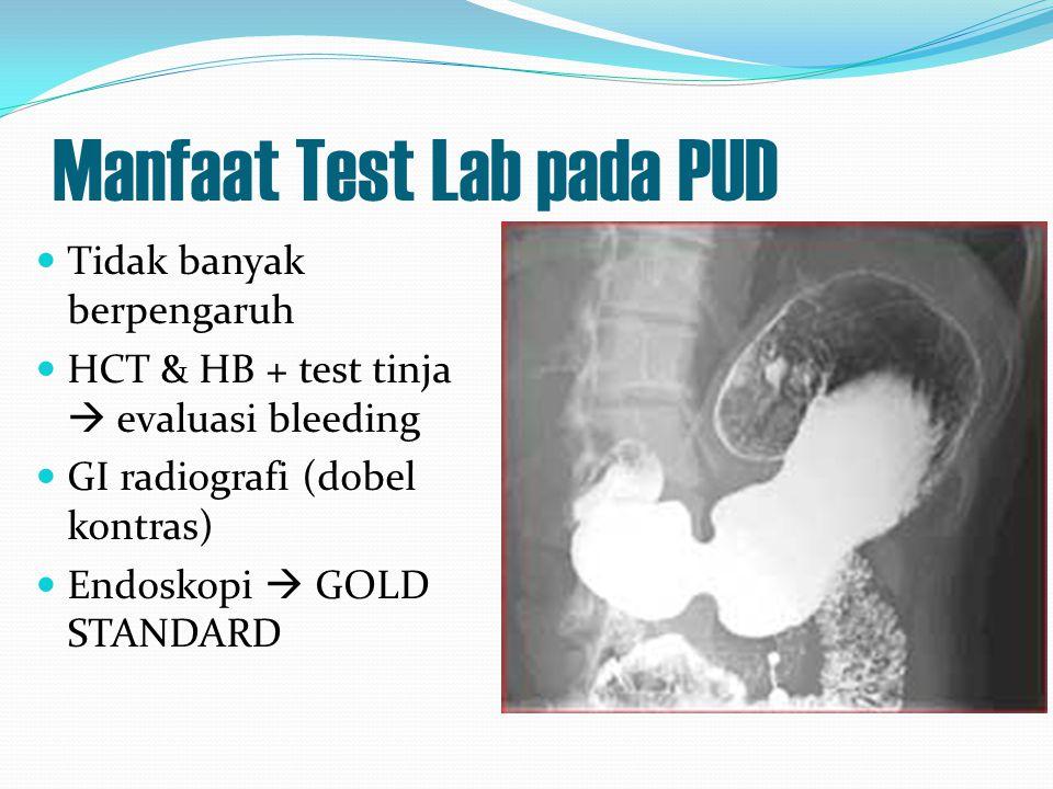 Manfaat Test Lab pada PUD
