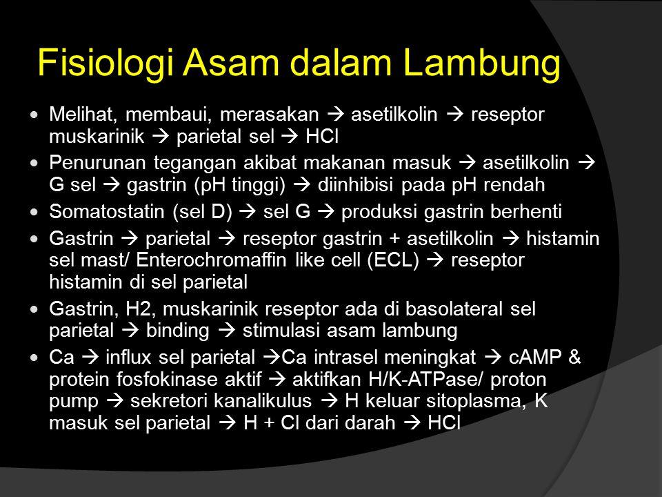 Fisiologi Asam dalam Lambung