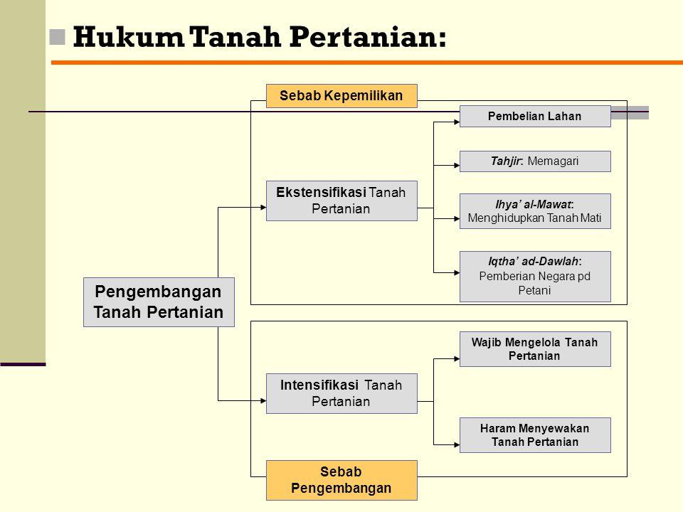 Hukum Tanah Pertanian: