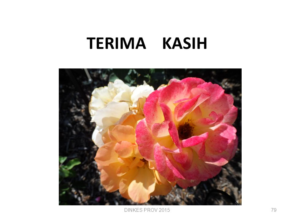 TERIMA KASIH DINKES PROV 2015