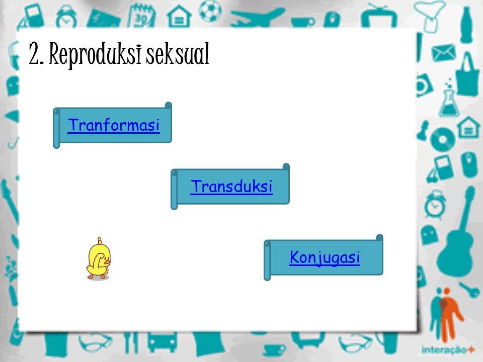 2. Reproduksi seksual Tranformasi Transduksi Konjugasi