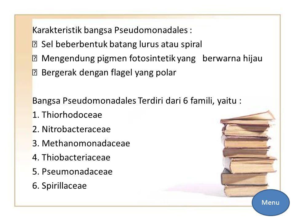 Karakteristik bangsa Pseudomonadales :  Sel beberbentuk batang lurus atau spiral  Mengendung pigmen fotosintetik yang berwarna hijau  Bergerak dengan flagel yang polar Bangsa Pseudomonadales Terdiri dari 6 famili, yaitu : 1. Thiorhodoceae 2. Nitrobacteraceae 3. Methanomonadaceae 4. Thiobacteriaceae 5. Pseumonadaceae 6. Spirillaceae