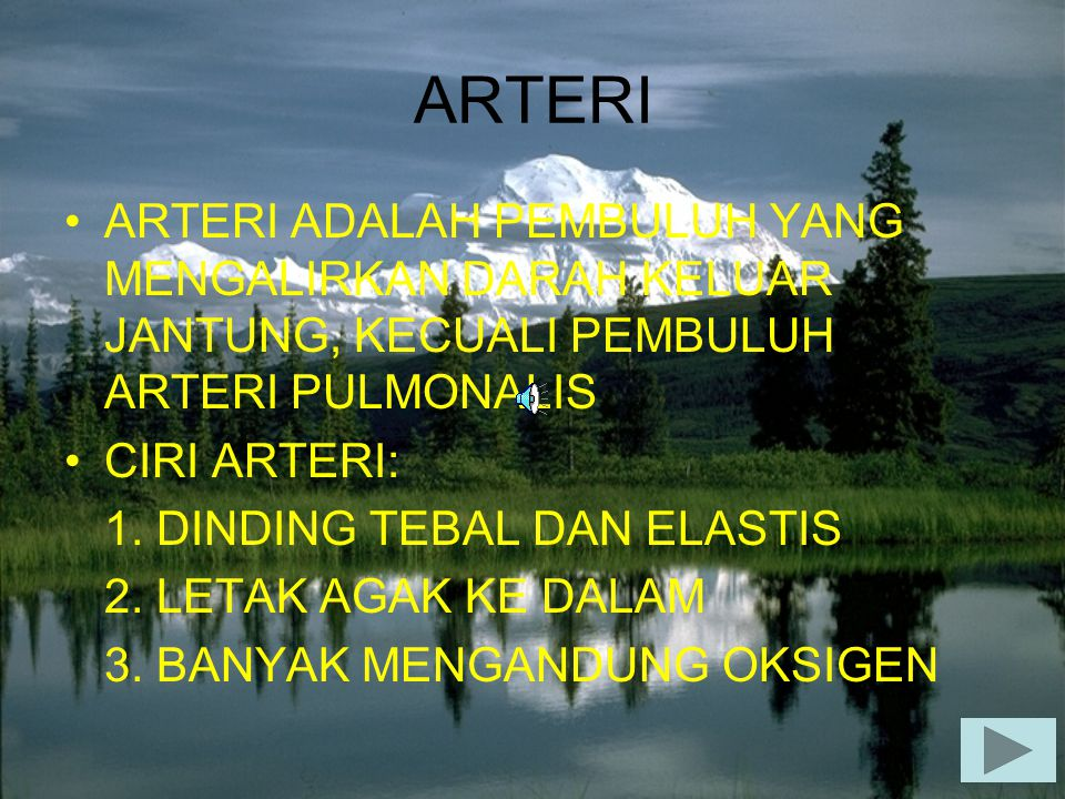 ARTERI ARTERI ADALAH PEMBULUH YANG MENGALIRKAN DARAH KELUAR JANTUNG, KECUALI PEMBULUH ARTERI PULMONALIS.
