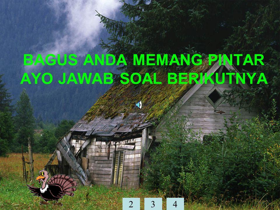 BAGUS ANDA MEMANG PINTAR AYO JAWAB SOAL BERIKUTNYA