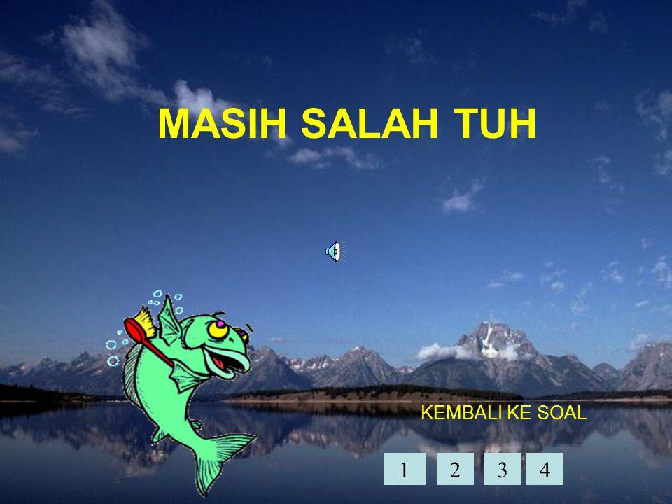 MASIH SALAH TUH KEMBALI KE SOAL 1 2 3 4