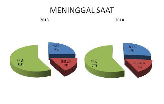 MENINGGAL SAAT 2013 2014
