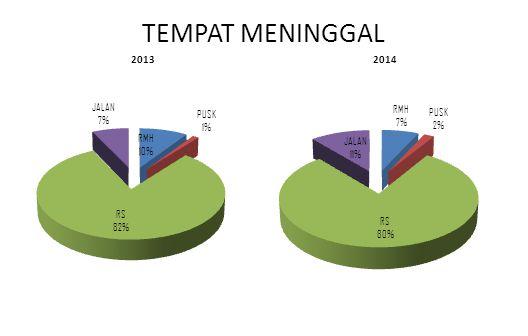 TEMPAT MENINGGAL 2013 2014
