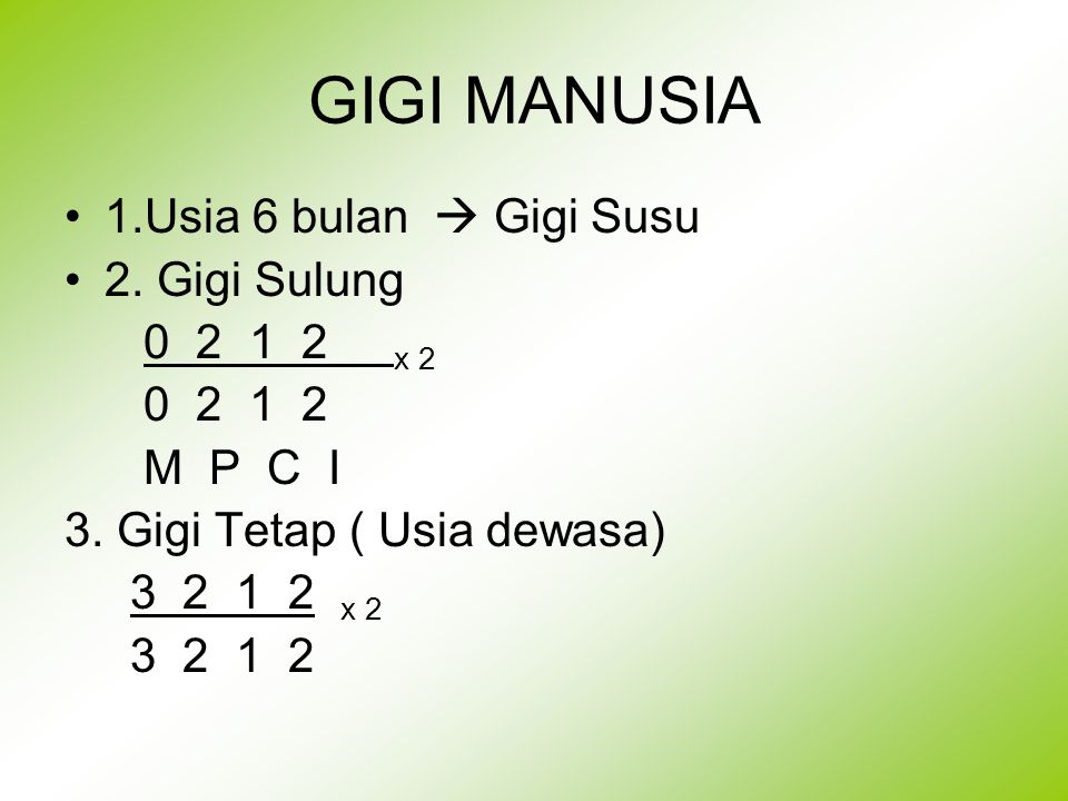 GIGI MANUSIA 1.Usia 6 bulan  Gigi Susu 2. Gigi Sulung 0 2 1 2 x 2