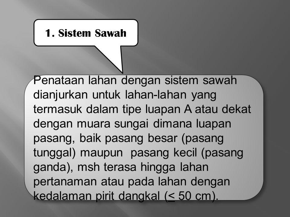 1. Sistem Sawah