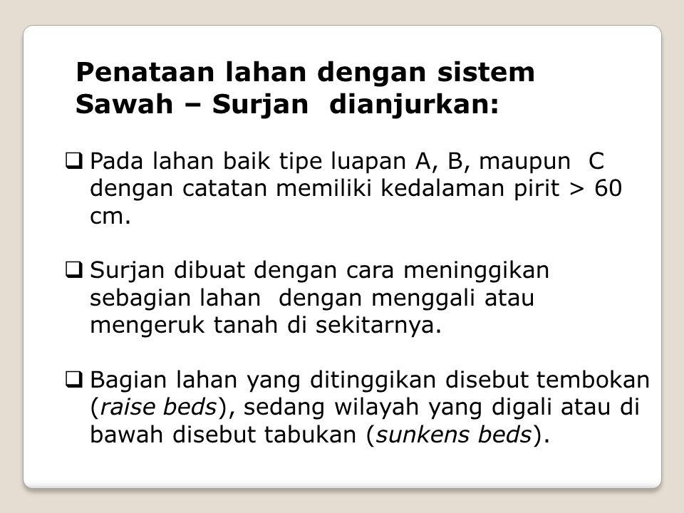 Penataan lahan dengan sistem Sawah – Surjan dianjurkan: