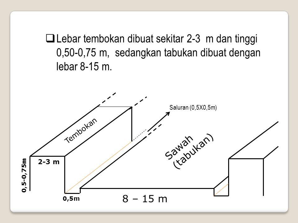 Lebar tembokan dibuat sekitar 2-3 m dan tinggi 0,50-0,75 m, sedangkan tabukan dibuat dengan lebar 8-15 m.