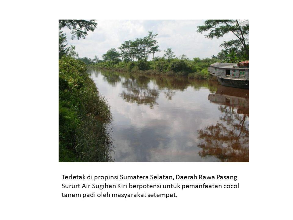 Terletak di propinsi Sumatera Selatan, Daerah Rawa Pasang Sururt Air Sugihan Kiri berpotensi untuk pemanfaatan cocol tanam padi oleh masyarakat setempat.