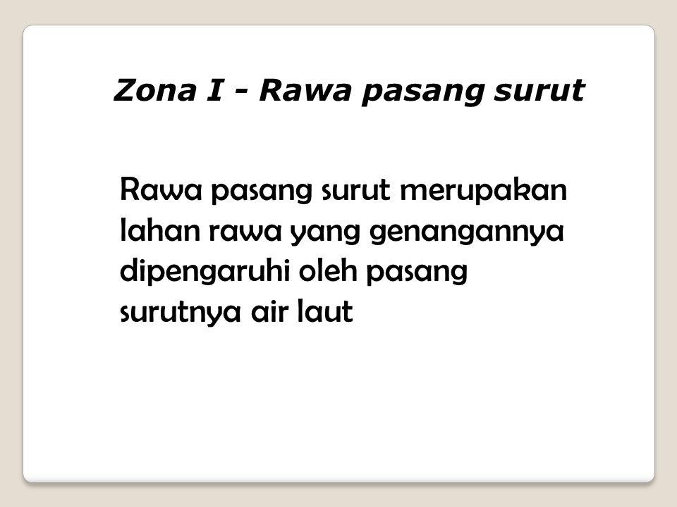 Zona I - Rawa pasang surut