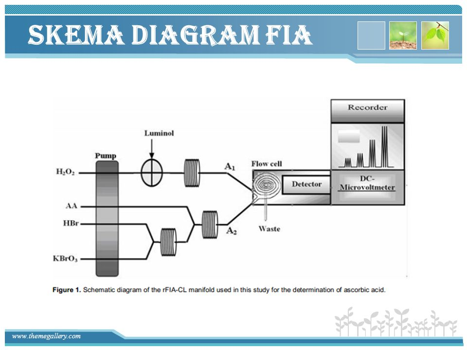 Skema Diagram FIA