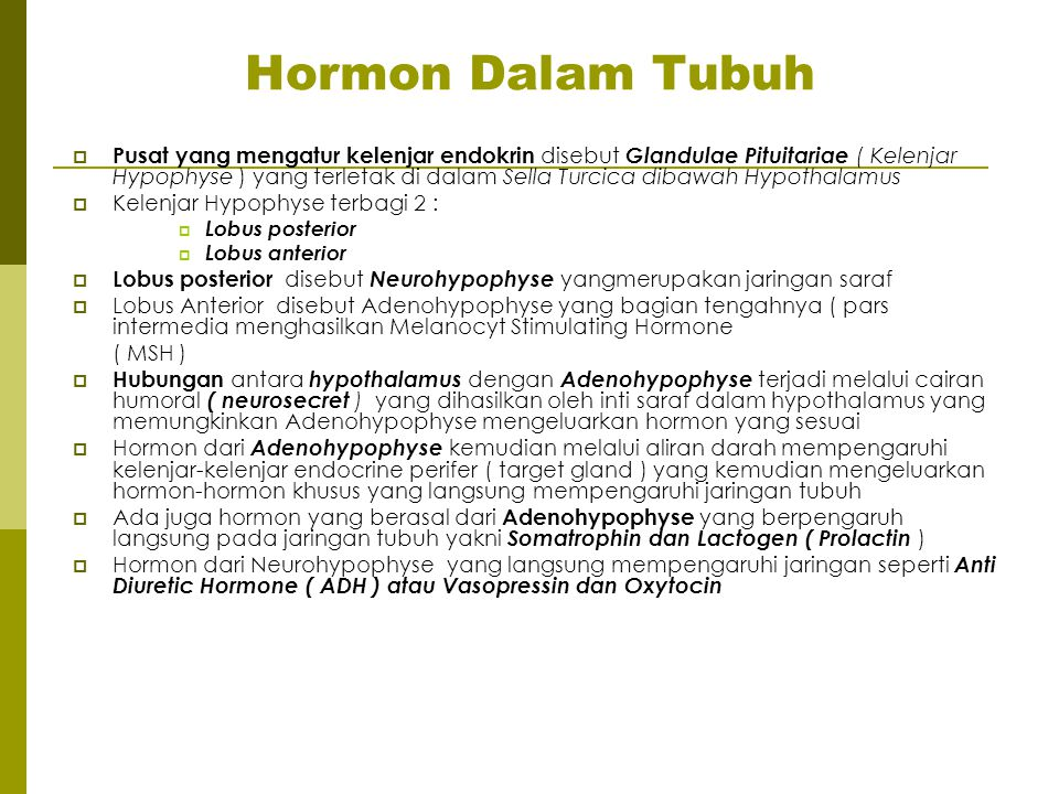 Hormon Dalam Tubuh