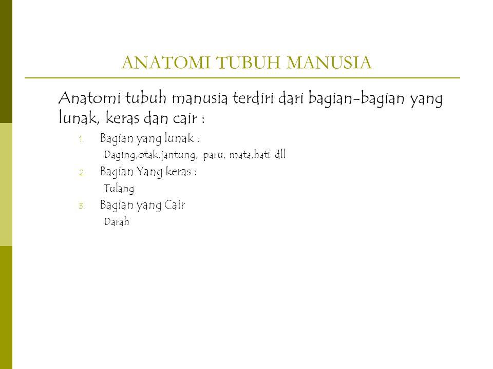 ANATOMI TUBUH MANUSIA Anatomi tubuh manusia terdiri dari bagian-bagian yang lunak, keras dan cair :