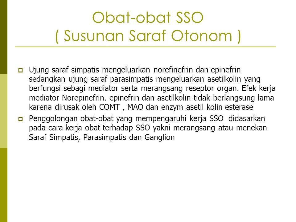 Obat-obat SSO ( Susunan Saraf Otonom )