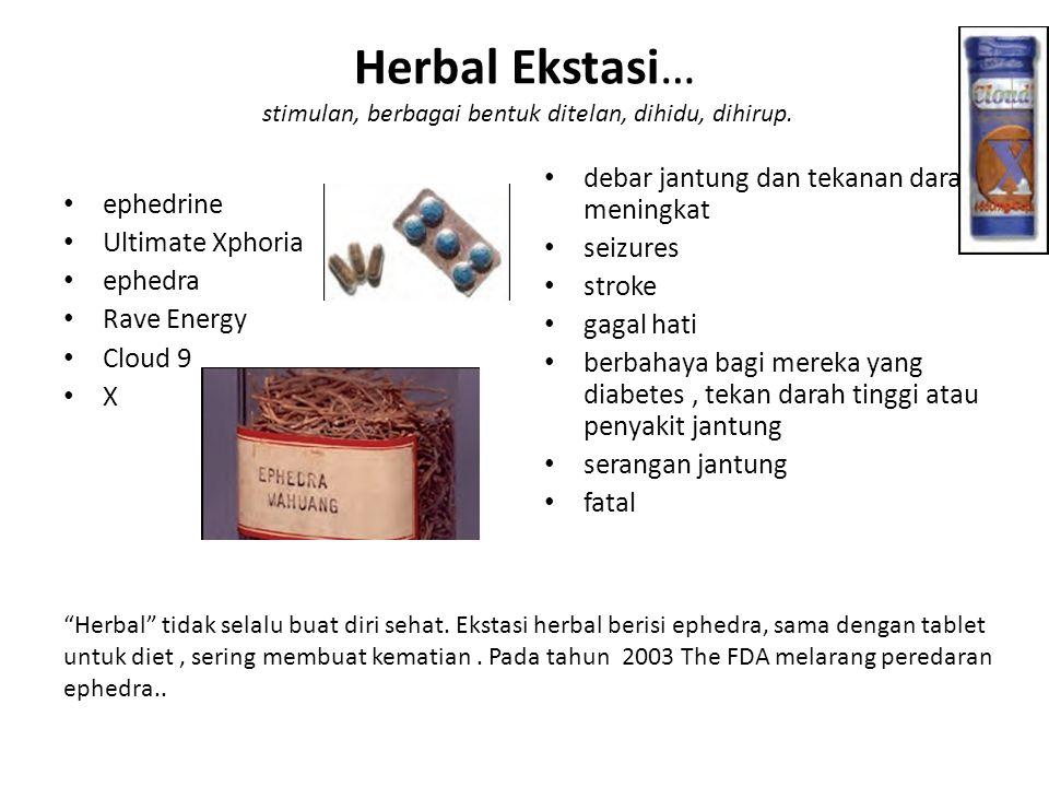 Herbal Ekstasi… stimulan, berbagai bentuk ditelan, dihidu, dihirup.