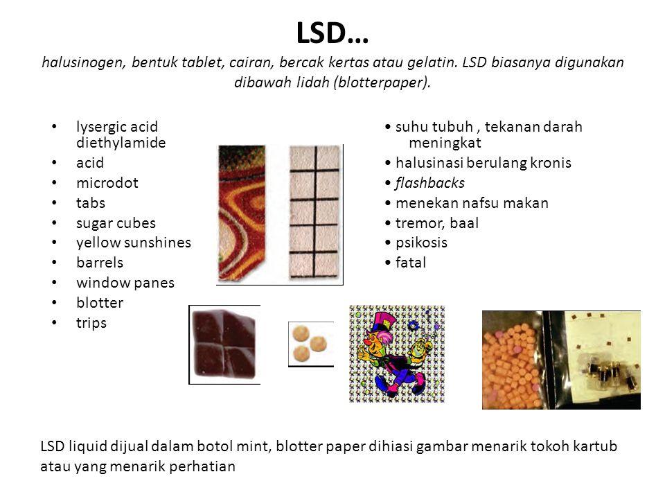 LSD… halusinogen, bentuk tablet, cairan, bercak kertas atau gelatin
