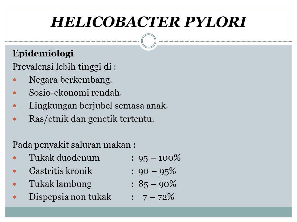 HELICOBACTER PYLORI Epidemiologi Prevalensi lebih tinggi di :