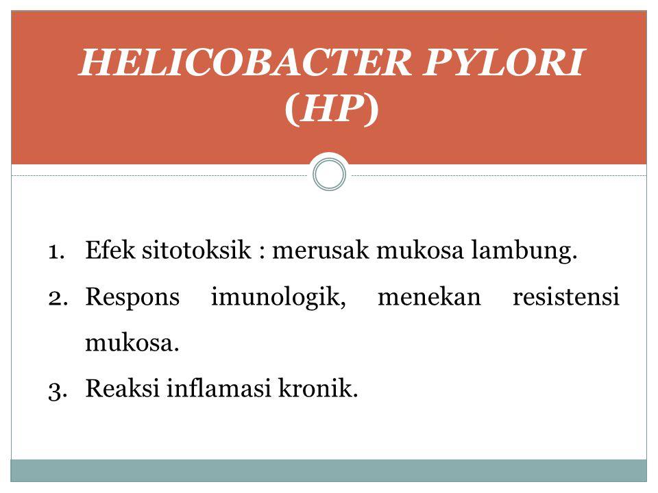 HELICOBACTER PYLORI (HP)