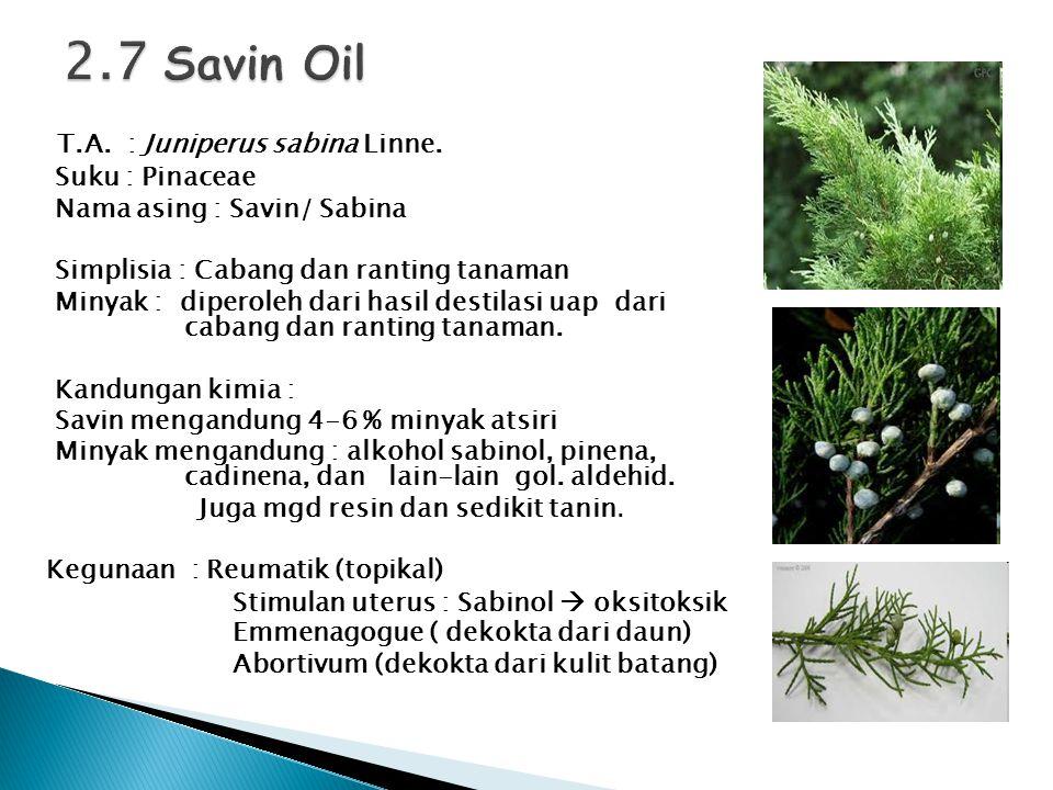 2.7 Savin Oil T.A. : Juniperus sabina Linne. Suku : Pinaceae