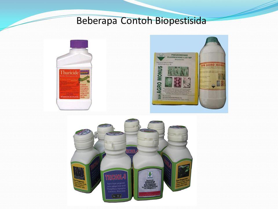 Beberapa Contoh Biopestisida