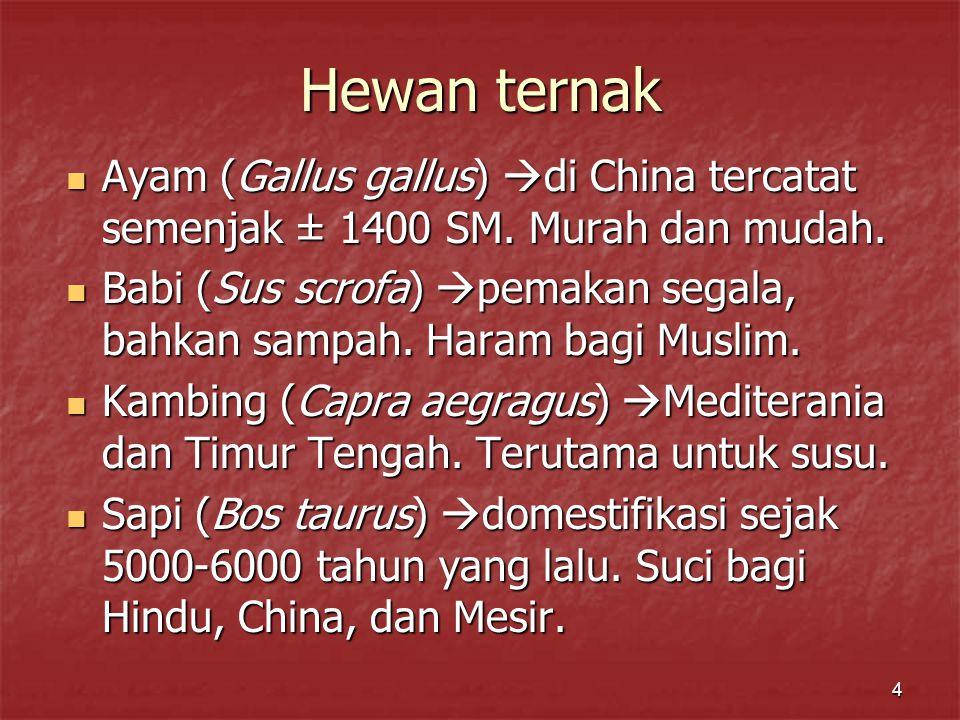 Hewan ternak Ayam (Gallus gallus) di China tercatat semenjak ± 1400 SM. Murah dan mudah.