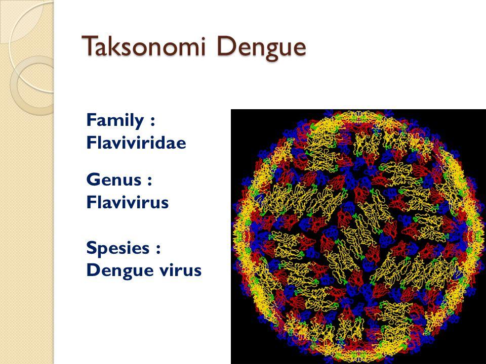 Taksonomi Dengue Family : Flaviviridae Genus : Flavivirus