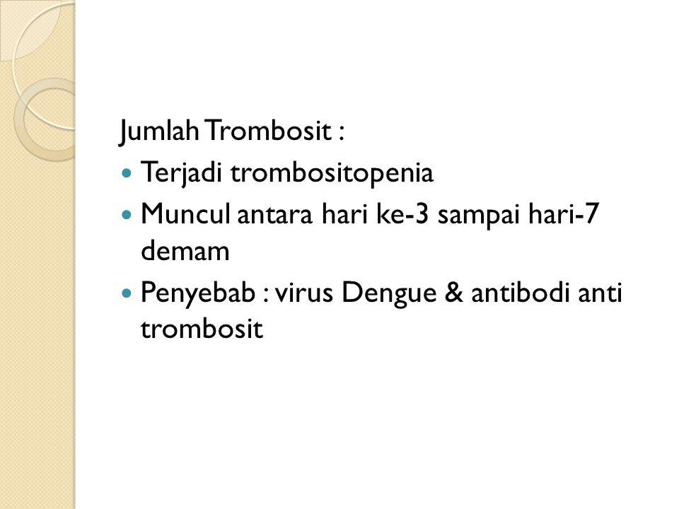 Jumlah Trombosit : Terjadi trombositopenia. Muncul antara hari ke-3 sampai hari-7 demam.