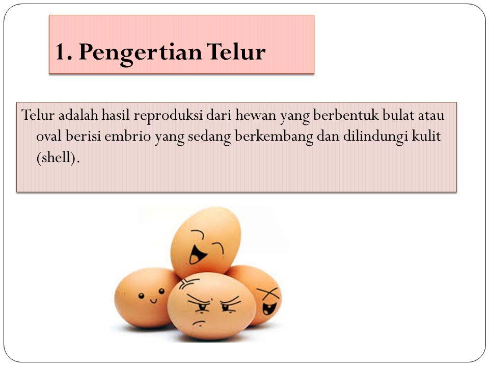 1. Pengertian Telur