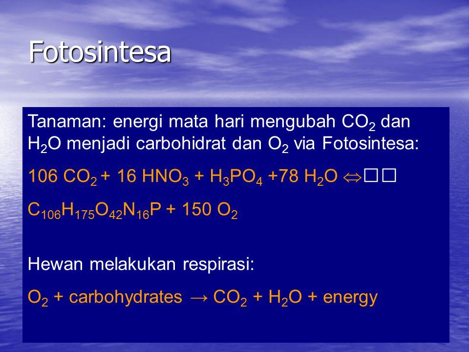 Fotosintesa Tanaman: energi mata hari mengubah CO2 dan H2O menjadi carbohidrat dan O2 via Fotosintesa: