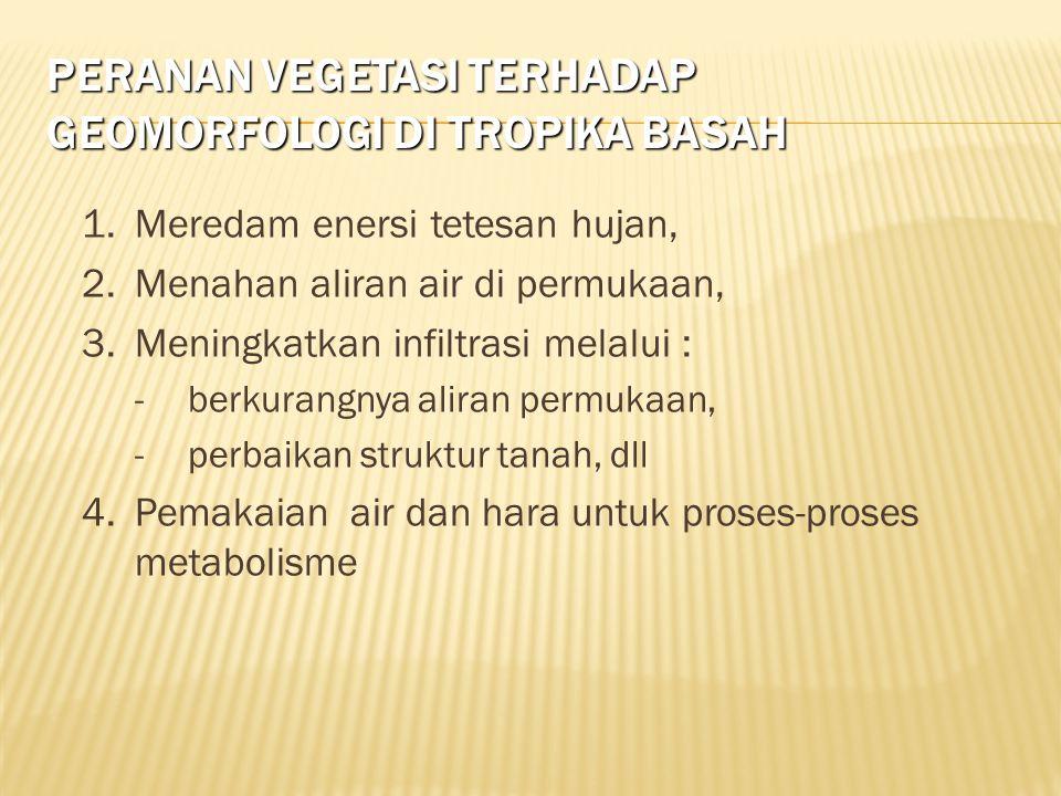 Peranan vegetasi terhadap geomorfologi di tropika basah