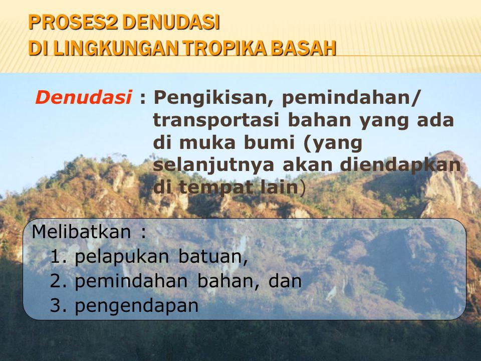 Proses2 Denudasi di Lingkungan Tropika Basah