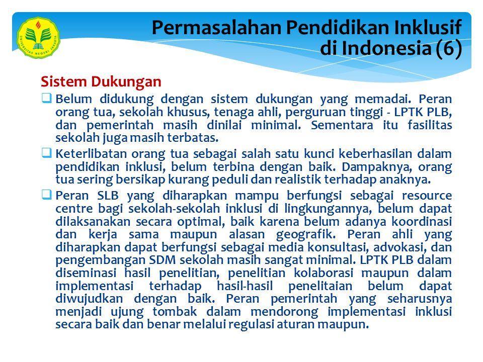 Permasalahan Pendidikan Inklusif di Indonesia (6)
