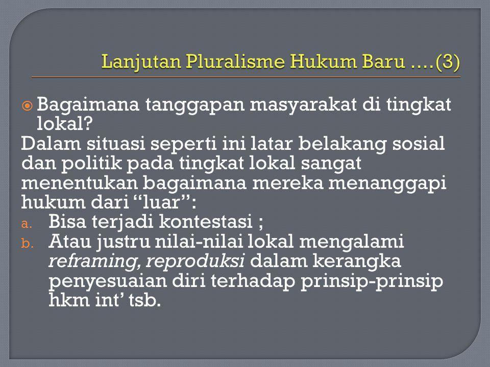 Lanjutan Pluralisme Hukum Baru ....(3)