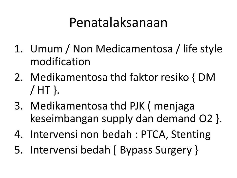Penatalaksanaan Umum / Non Medicamentosa / life style modification