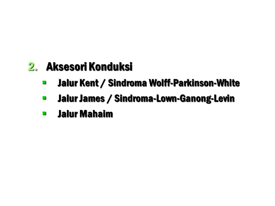 Aksesori Konduksi Jalur Kent / Sindroma Wolff-Parkinson-White