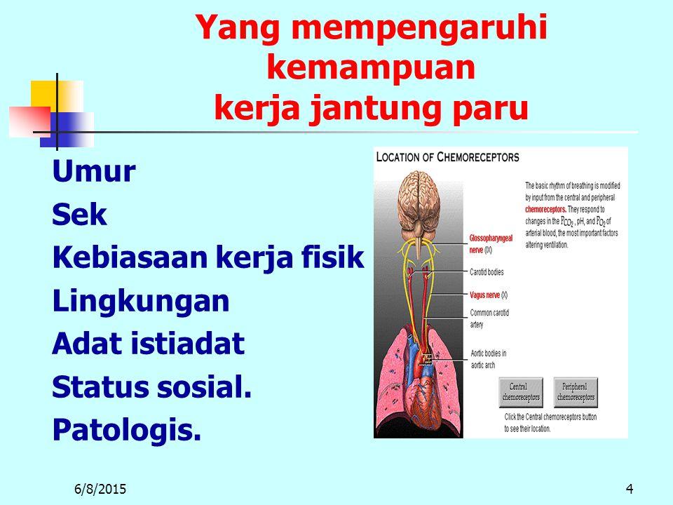Yang mempengaruhi kemampuan kerja jantung paru