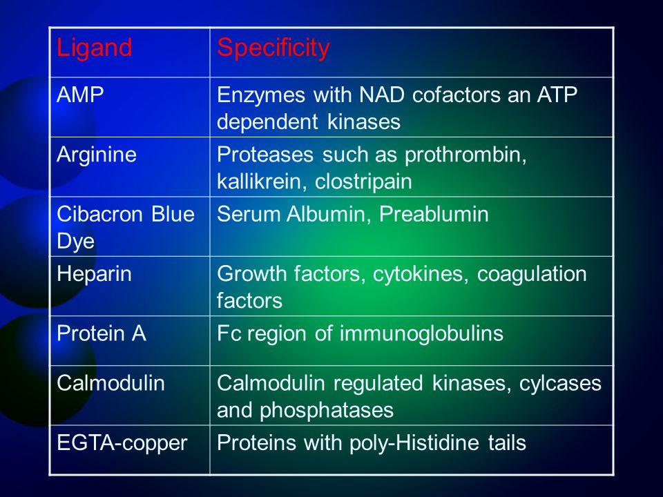 Ligand Specificity AMP