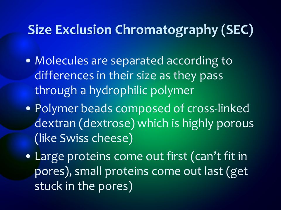Size Exclusion Chromatography (SEC)