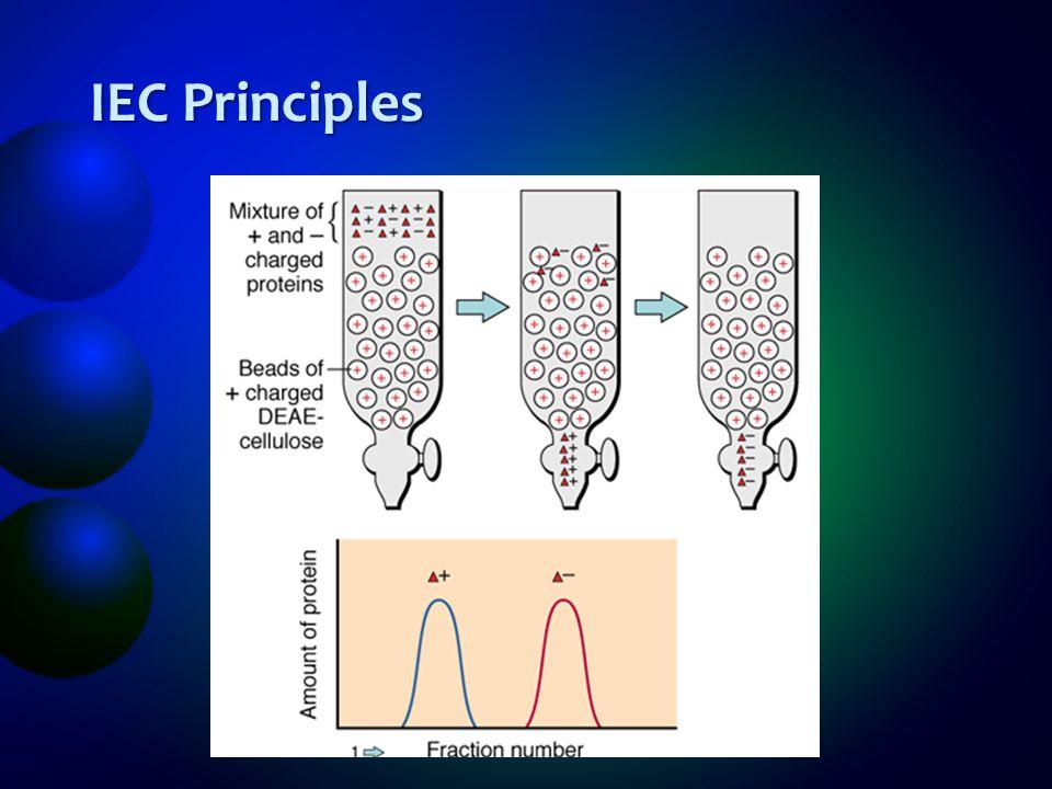 IEC Principles