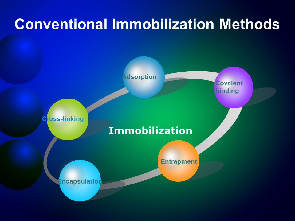 Conventional Immobilization Methods