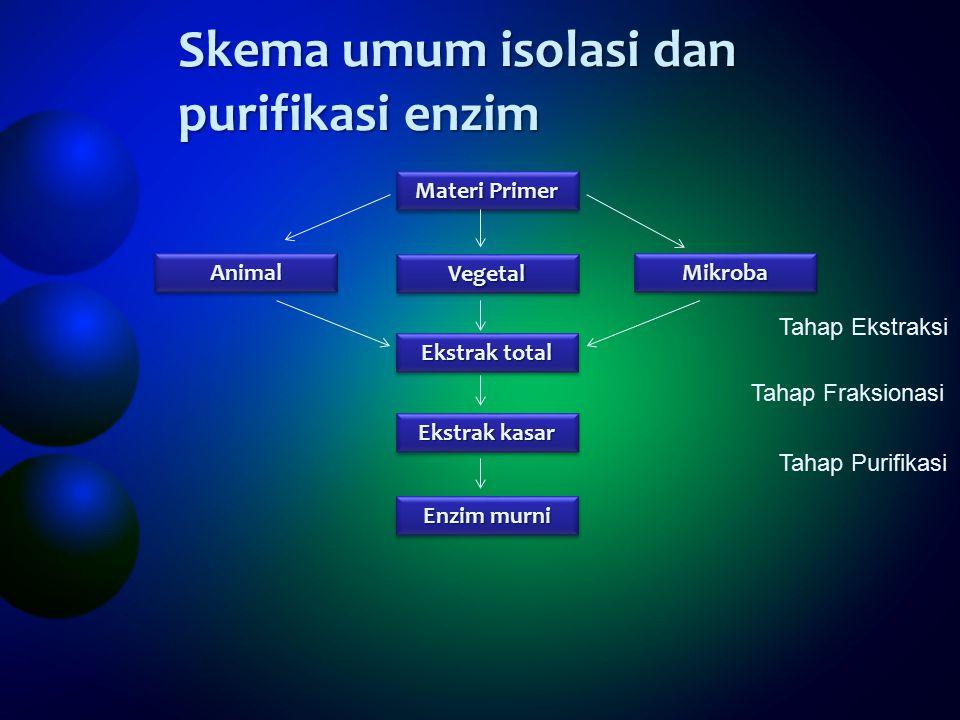 Skema umum isolasi dan purifikasi enzim