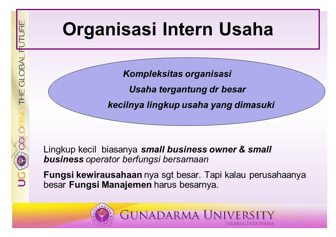 Organisasi Intern Usaha