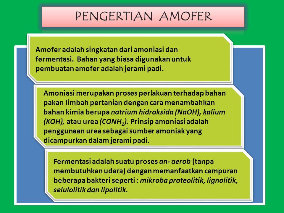 PENGERTIAN AMOFER Amofer adalah singkatan dari amoniasi dan fermentasi. Bahan yang biasa digunakan untuk pembuatan amofer adalah jerami padi.
