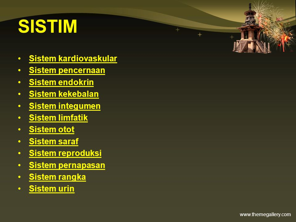 SISTIM Sistem kardiovaskular Sistem pencernaan Sistem endokrin