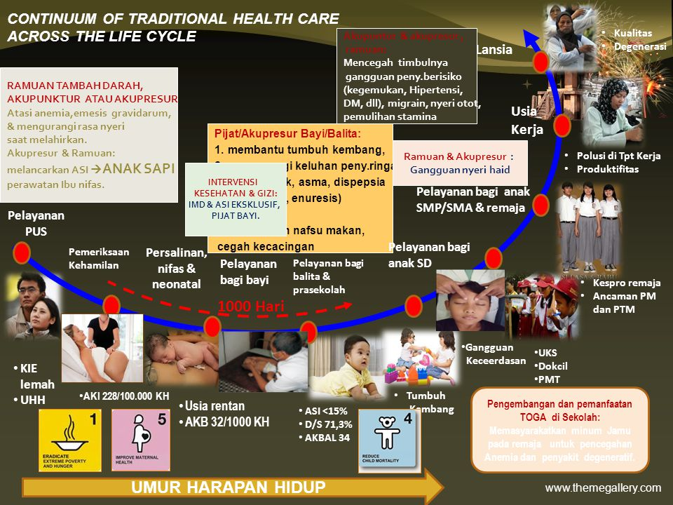 CONTINUUM OF TRADITIONAL HEALTH CARE ACROSS THE LIFE CYCLE