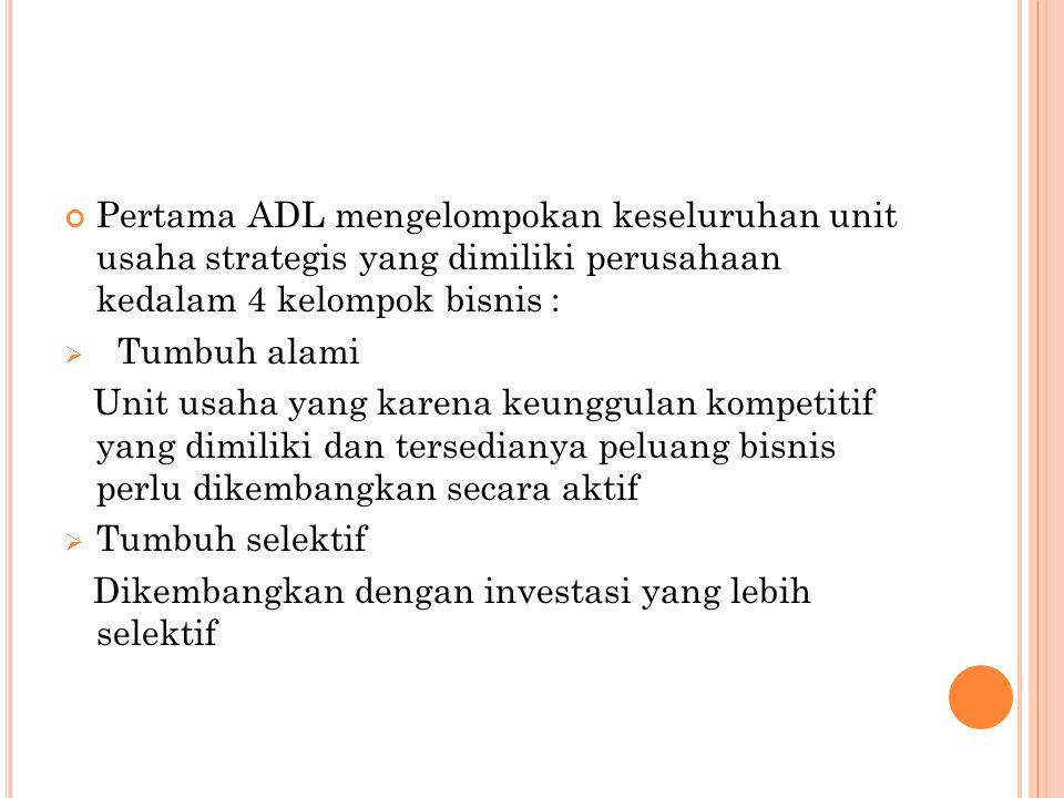 Pertama ADL mengelompokan keseluruhan unit usaha strategis yang dimiliki perusahaan kedalam 4 kelompok bisnis :