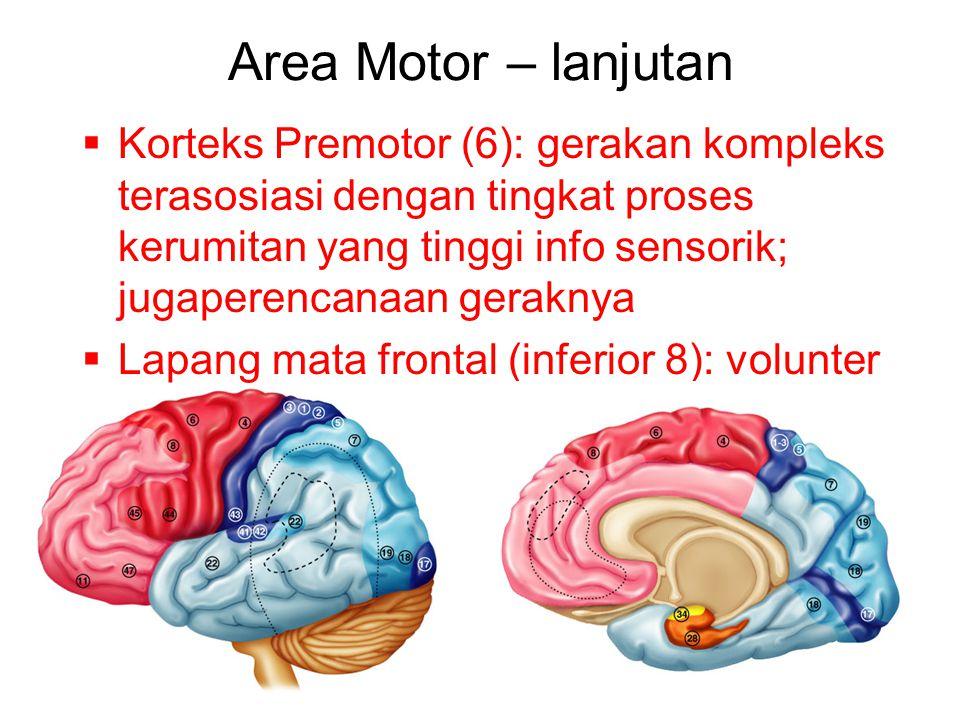 Area Motor – lanjutan
